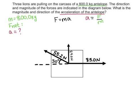 Calculating Net Force in 2-D