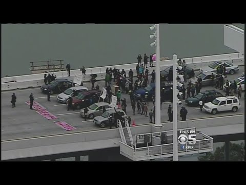 25 Arrested In Bay Bridge Protest That Stopped Traffic
