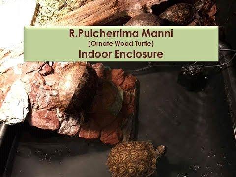 INDOOR TURTLE ENCLOSURE- Ornate wood turtle indoor set up