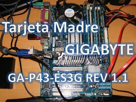 Tarjeta Madre Gigabyte GA-P43-ES3G Socket 775 Usa Memoria Ram Ddr2 Maximo 16GB soporta Windows 10