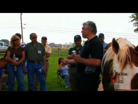 Grant Moon Forging and Horseshoeing Clinic 4 Emerson Horseshoe Supply 2009