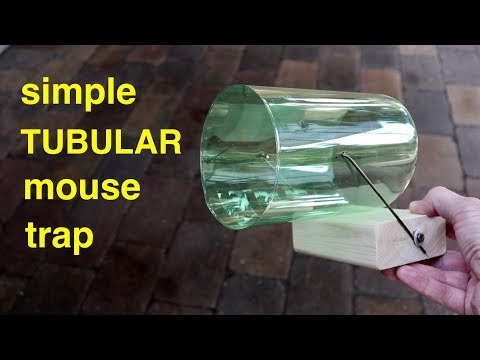 Simple ● Tubular Mouse Trap ( that works ! )
