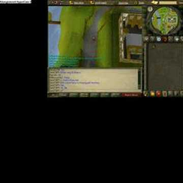 how to get a pet monkey in runescape