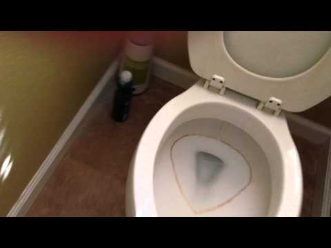 DIY Hard Water Ring in the Toilet Bowl using Pumice Stone