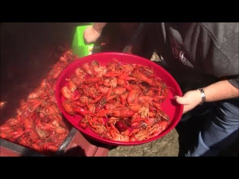 600 Pounds of Boiled Crawfish and Hot Cars