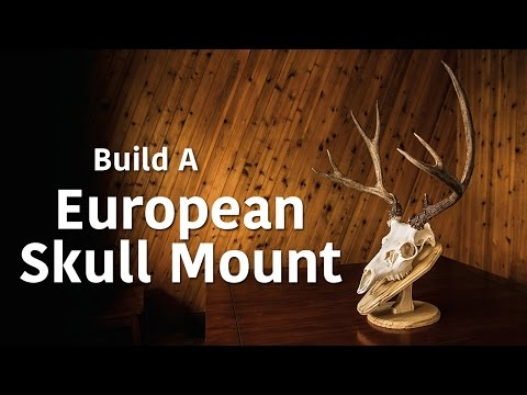 Making a European Mount Wall Plaque/Table Pedestal