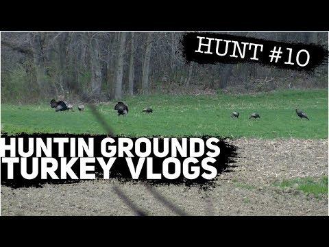Pennsylvania Strutters - Flocked Up!  #11  S9