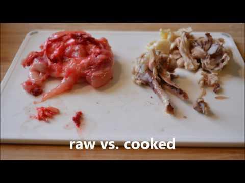Raw Diet Myth: Chicken Bones Splinter?