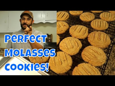 Snack Time on the Homestead!  Chewy Molasses Cookies!!!