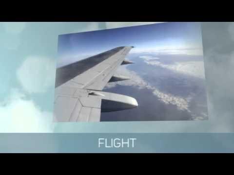 Best Flight Prices - REAL Airfare Deals