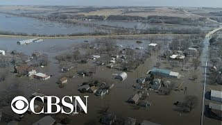 Download Farmers devastated by Midwest flooding Video
