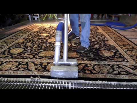 Cleaning Removing Pet Pee Pee Odor from Oriental Rug
