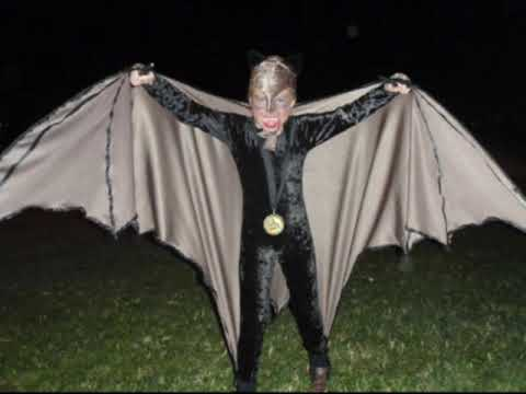 Halloween Bat 2009