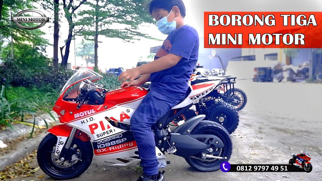 Serunya Baim & Shasya Borong 3 Mini Motor Sekaligus ( ATV, GP Medium, Trail 2 Tak ) - minimotor