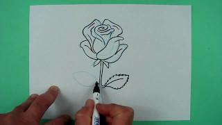 wie zeichnet man eine rose zeichnen f r kinder music jinni. Black Bedroom Furniture Sets. Home Design Ideas