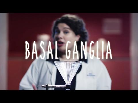 Basal Ganglia - UBC Flexible Neuroanatomy - Season 1 - Ep 7