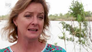 Download 'It's just politics': National Butterfly Center fights border wall construction Video