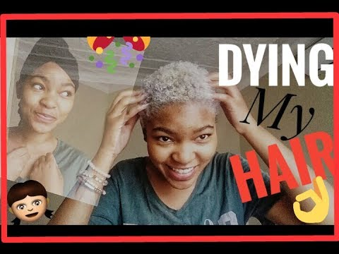 HOW TO DYE YOUR HAIR | Grey hair | South African YouTuber