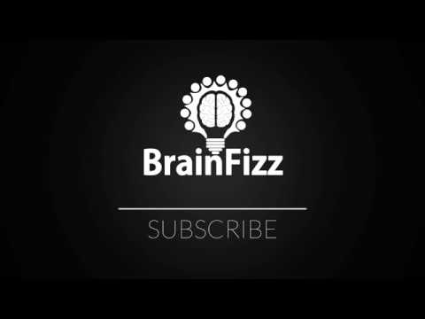 What's brainfizz?