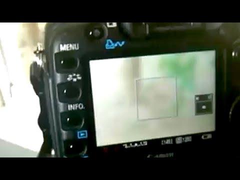 Autofocus in  Movie Mode on the Canon 5D Mark II