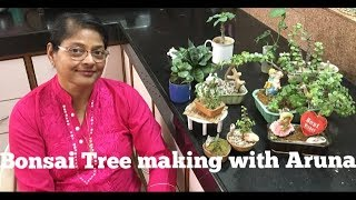 BONSAI TREE making for Beginners at Home, Jade Plant, indoor plant decoration in HINDI eng subtitles