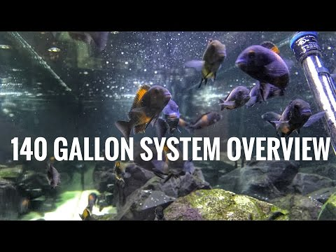 140 Gallon Tank - System Overview