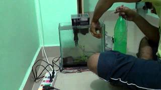Diy Co2 Reactor Or Generator For Aquatic Plants In Less Than 1