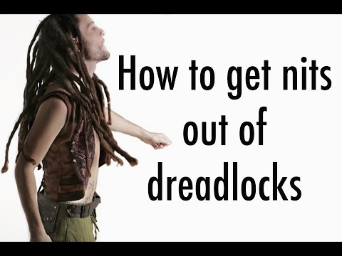 How to get rid of head lice from dreadlocks - Kills Nits Easy