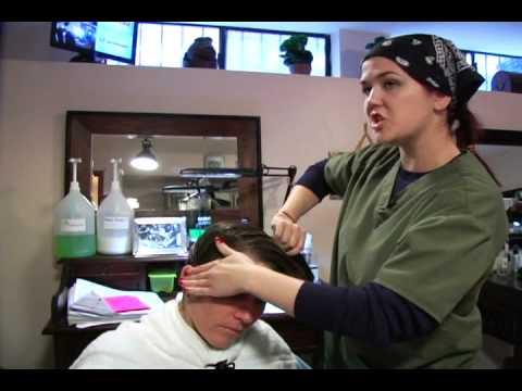 Hair Fairies - the Head Lice Helpers