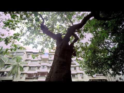 Godrej aer – Tree on pollution