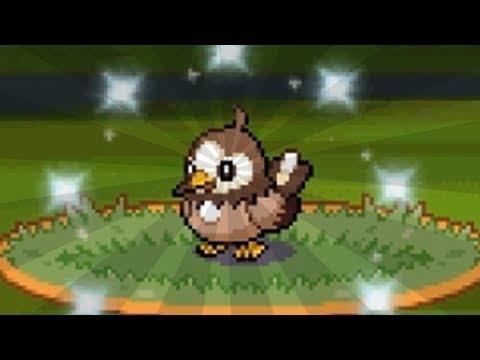 FULL ODDS SHINY POKEMON ALREADY!? | Pokemon Diamond & Pearl Versus Royale - 01