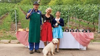 German Village Life Experience: A Day in Marktheidenfeld