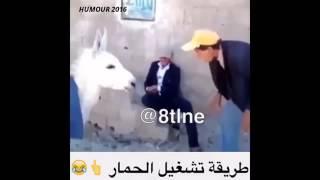 اضحك حتى الموت