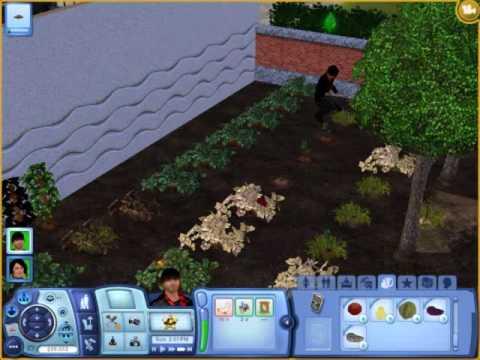 My Sims 3 ultra Garden