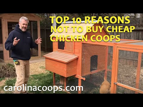 Beware of Cheap Chicken Coops!