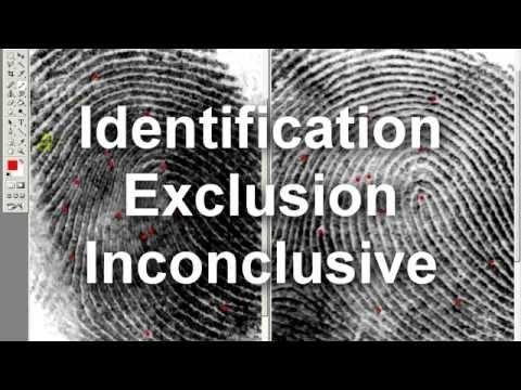 How to Compare Fingerprints - The Basics