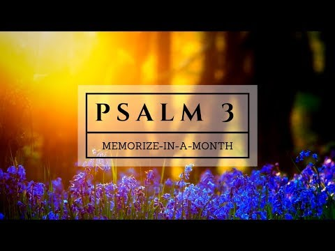 PSALM 3 - Memorize in a Month! - with PREPSTEADERS.com