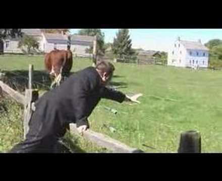 Electric Fence Test