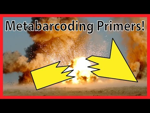 Development of metabarcoding primers (tutorial on primer degeneracy)