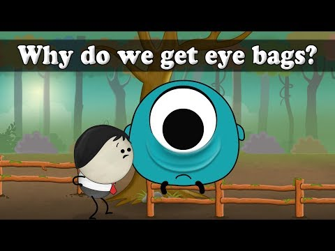 Why do we get eye bags? | It's AumSum Time