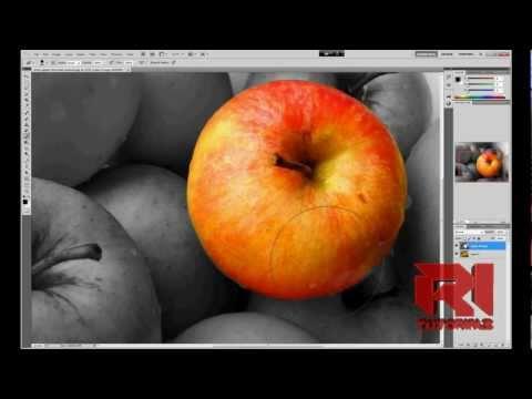 How to Create Color Splash Effect   Adobe Photoshop cs5