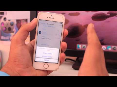 How to Email WhatsApp Chat History from iPhone