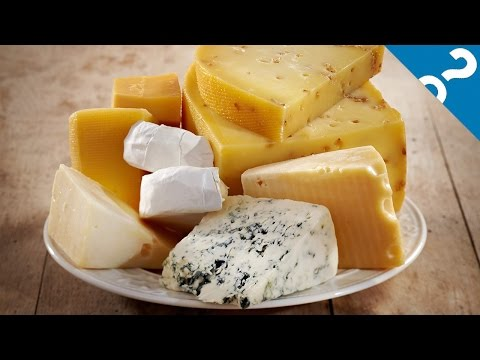 5 Gross Things That Make Cheese Delicious | What the Stuff?!