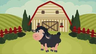 Baa Baa Black Sheep Nursery Song