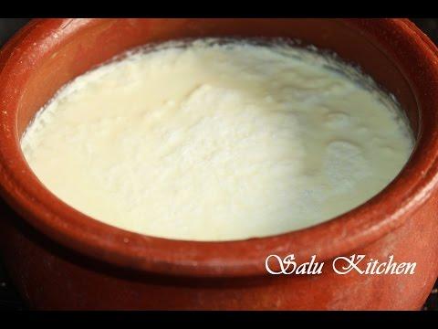 How to make  homemade Curd/Yogurt/Dahi