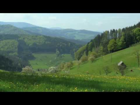 Black Forest Volksmarch