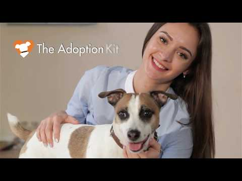 The Adoption Show - Episode 2