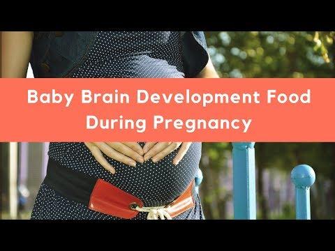 Baby Brain Development Food During Pregnancy