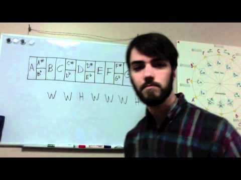 Music Theory Basics for Guitar: Lesson 2 - The Major Scale