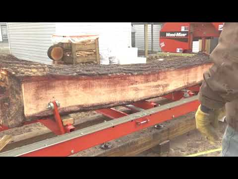Cutting bent pine into straight siding with my Woodmizer LT15